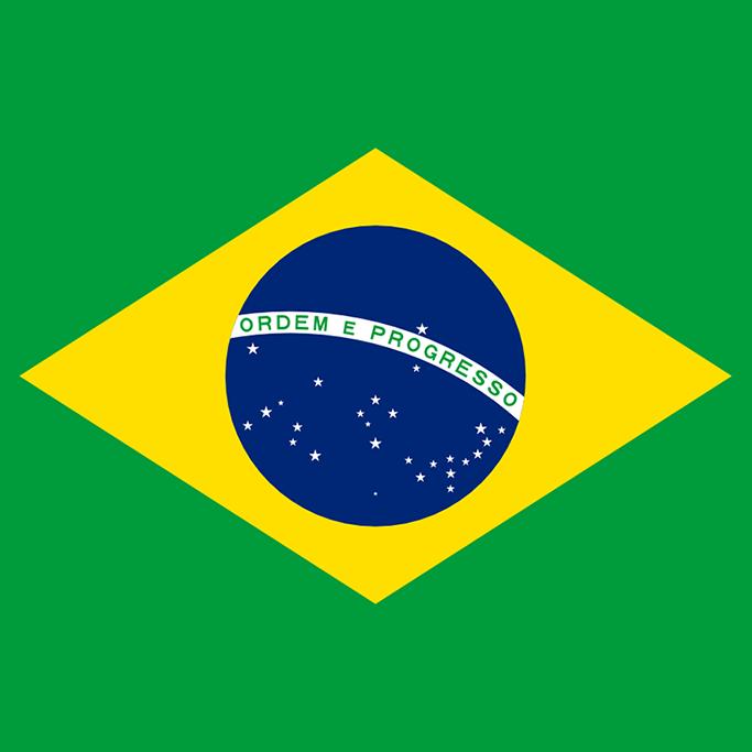 Group_brazilian-portuguese