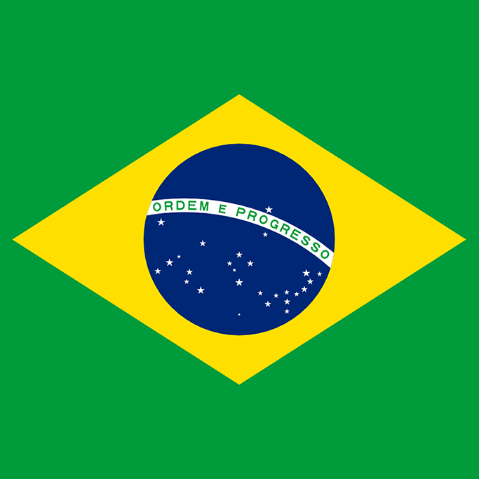 Group_brazilian-portuguese
